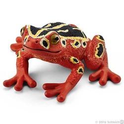 RAGANELLA AFRICANA animali in resina SCHLEICH miniature 14760 wild life FROG