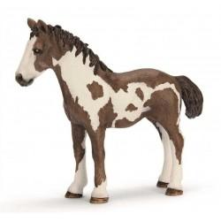 PULEDRO PINTO DI UN ANNO animali in resina SCHLEICH miniature 13695 farm life CAVALLO