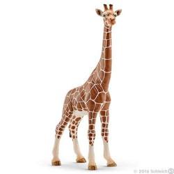 GIRAFFA FEMMINA 2016 animali in resina SCHLEICH miniature 14750 wild life GIRAFFE