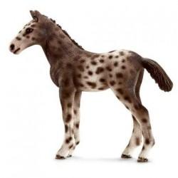 PULEDRO KNABSTRUPPER animali in resina SCHLEICH miniature 13760 Farm Life CAVALLO 3+