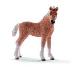 PULEDRO BASHKIR CURLY animali in resina SCHLEICH miniature 13781 Farm Life CAVALLO 3+