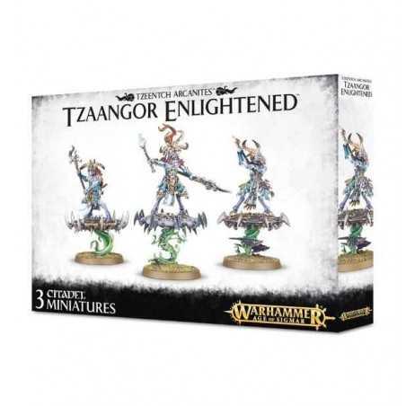 TZAANGOR ENLIGHTENED Tzeentch Arcanites WARHAMMER Age of Sigmar GAMES WORKSHOP 3 miniature CITADEL età 12+