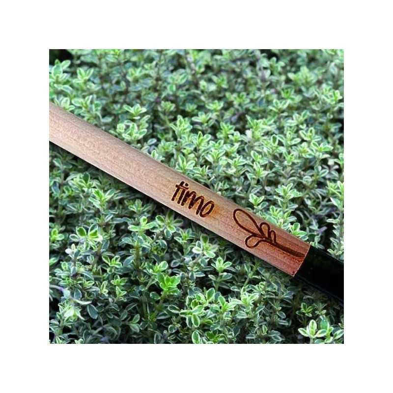 Sprout MATITA in legno CHE SI PIANTA capsula CON SEME per far crescere una piant