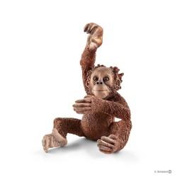ORANGOTANGO CUCCIOLO animali in resina SCHLEICH Wild Life 14776 YOUNG ORANGUTAN orango tan 3+