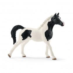 STALLONE ARABO PINTO Schleich CAVALLO animali 13840 miniature in resina HORSE CLUB età 3+