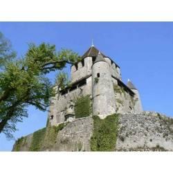 Tour César-Provins-France