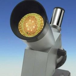 MICROSCOPIO A DUE VIE set con visore e proiettore EDU-TOYS 3 ottiche di precisione per bambini