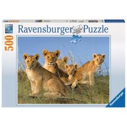PUZZLE Ravensburger CUCCIOLI DI LEONE soft click 500 PEZZI 36 x 49 cm
