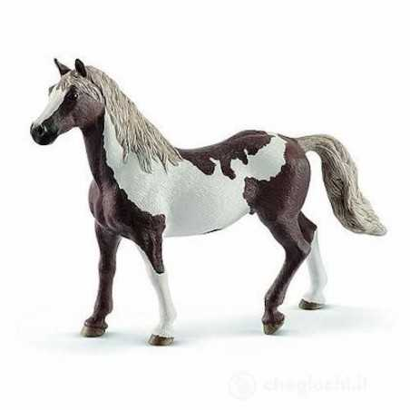 CASTRATO PAINT HORSE animali in resina SCHLEICH miniature 13885 Horse Club CAVALLI età 3+ Schleich - 1
