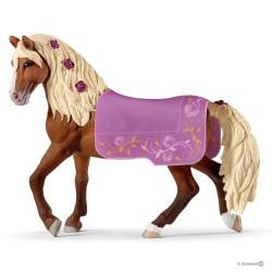 STALLONE PASO FINO cavallo...