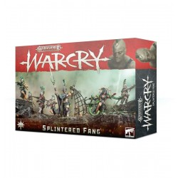 WARCRY warhammer SPLINTERED...