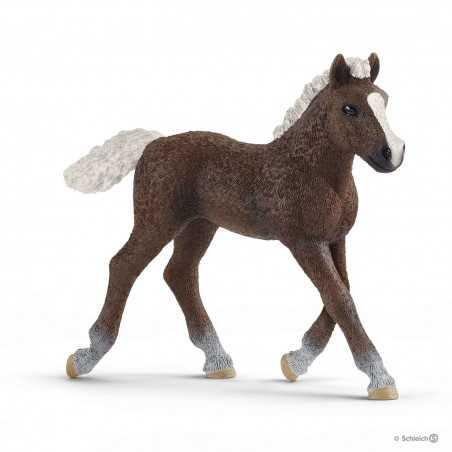 PULEDRO DELLA FORESTA NERA black forest foal HORSE CLUB schleich 13899 miniatura CAVALLI età 3+