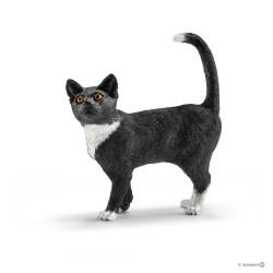 GATTO IN PIEDI cat standing...