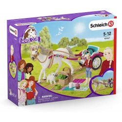 CARROZZA CON CAVALLO set...