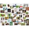 PUZZLE ravensburger COLLAGE ANIMALI premium 1500 PEZZI 80 x 60 cm