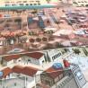 PREDONI DI SCIZIA fever games IN ITALIANO gioco da tavolo GUERRIERI età 12+