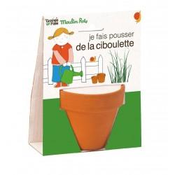 VASETTO DI ERBA CIPOLLINA BIOLOGICA vaso, semi e disco di cocco Moulin Roty & Graines en Folie età 3+