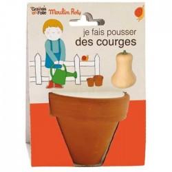 VASETTO DI ZUCCA BIOLOGICA vaso, semi e disco di cocco Moulin Roty & Graines en Folie età 3+