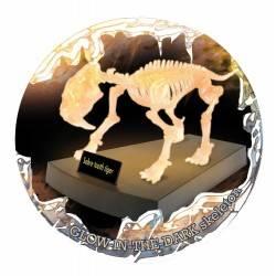TIGRE DAI DENTI A SCIABOLA scheletro kit di montaggio fosforescente Geoworld