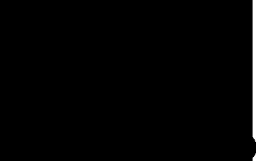 SOLFERINO LIBRI